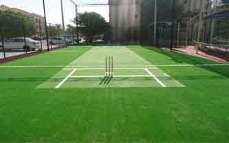 Cricket Practice Pitch